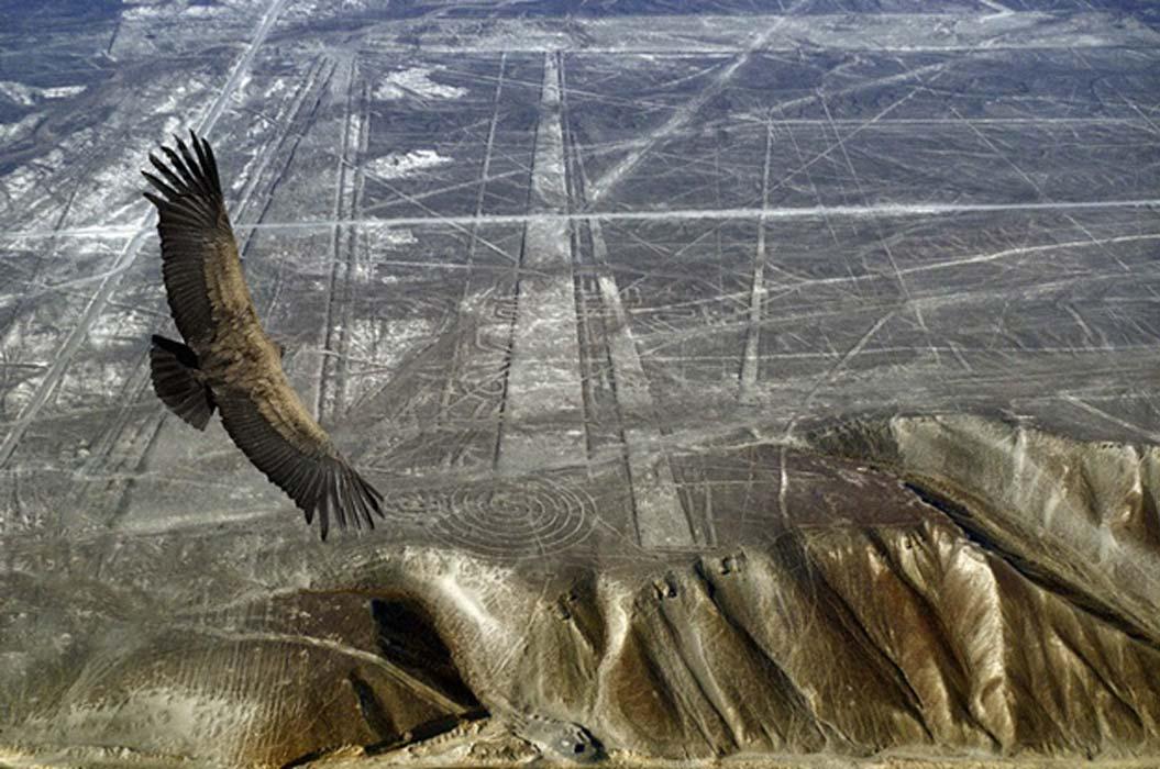 Nazca lines.