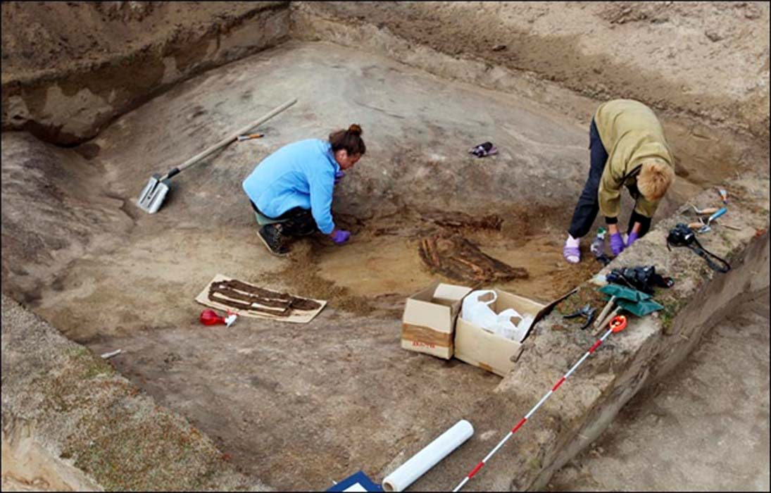 Excavations at the site of in Siberia. Source: Andrey Plekhanov