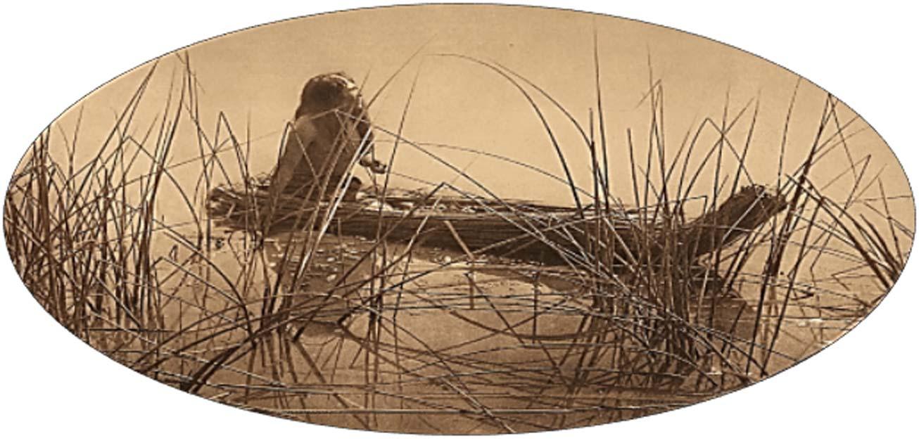 Pomo Tule Canoe (Edward Curtis).