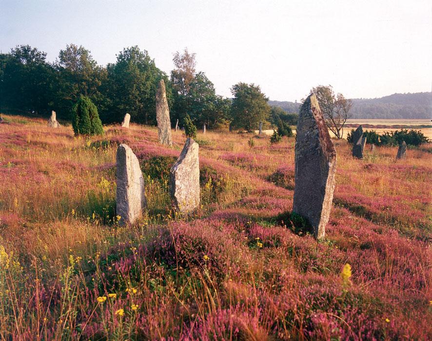 Li's gravestones at Fjärås Bräcka