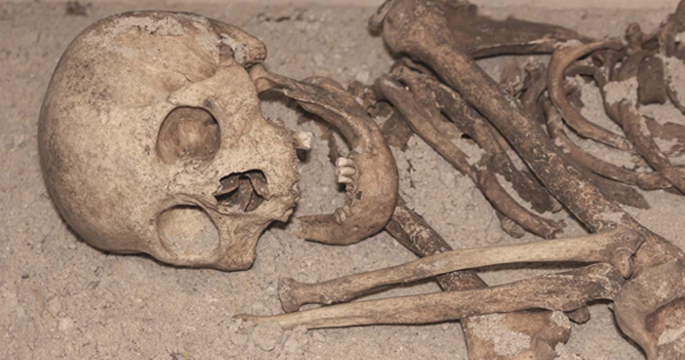 Ancient human skeleton missing teeth