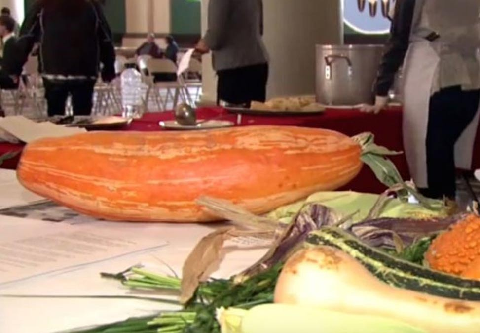 The squash in this photo had not been grown for hundreds of years. Native Americans revived it after finding seeds in a pot 800 years old.