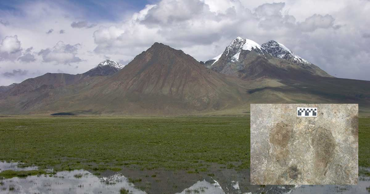 Humans Occupied Tibetan Plateau Thousands of Years Earlier than Previously Thought