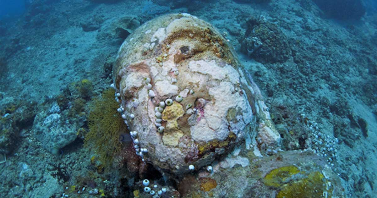 stone head of lord buddha photographed during a dive at the temple near pemuteran - Temple Garden