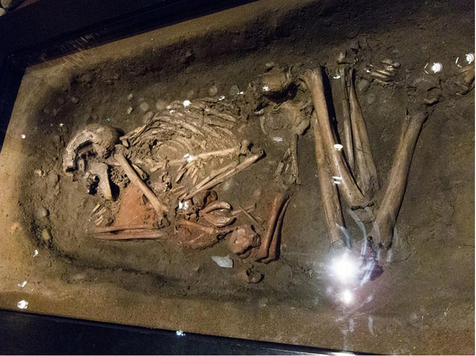 A Viking grave. New studies on bones reflect the harsh conditions many endured.