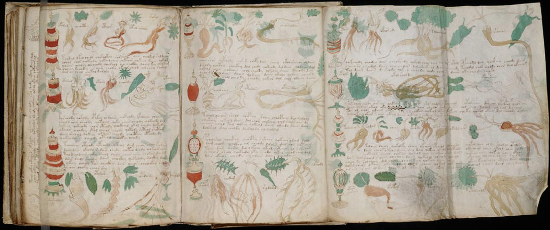 The Voynich Manuscript is open to the public to attempt translation