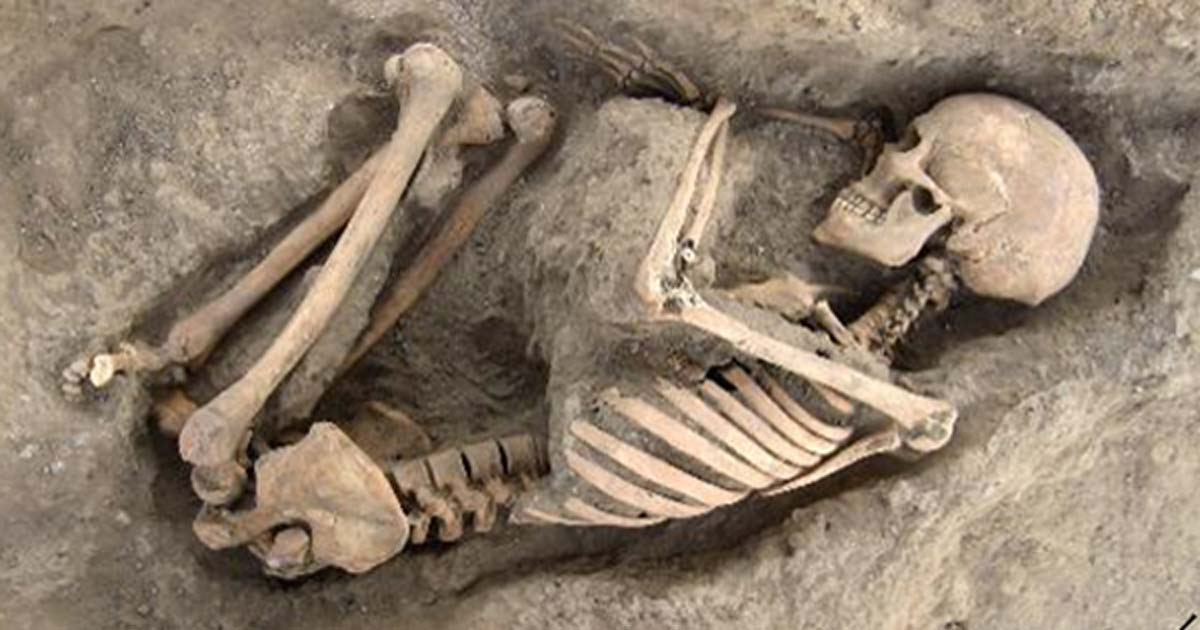 Skeletal remains found in Wadi Faynan 16
