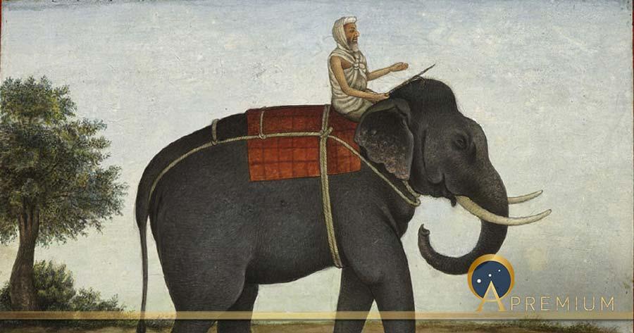 The Mûmakil Elephant Slayers Of The Ancient World