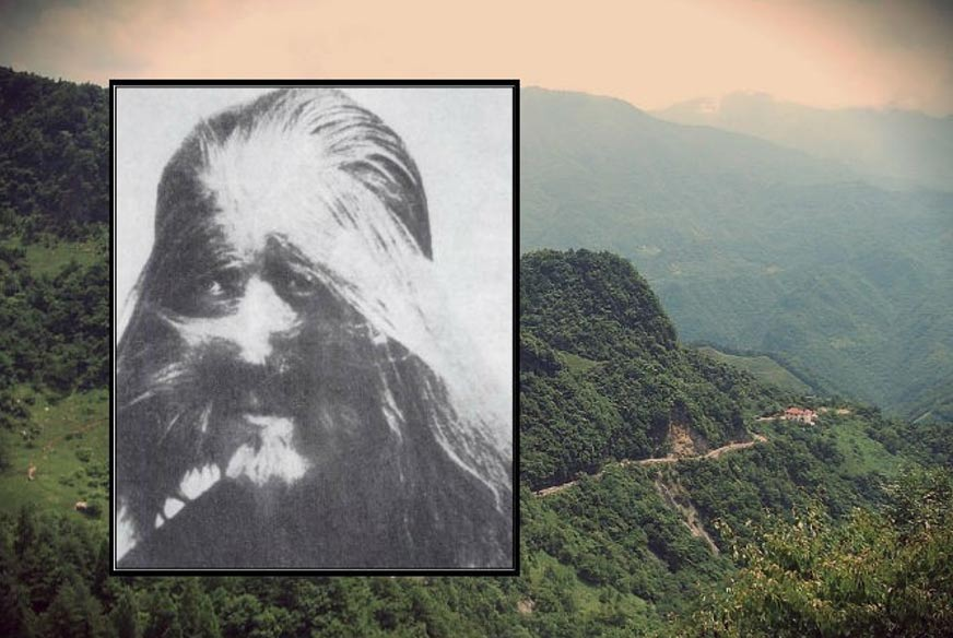 Wildman, Chinese Version of Bigfoot