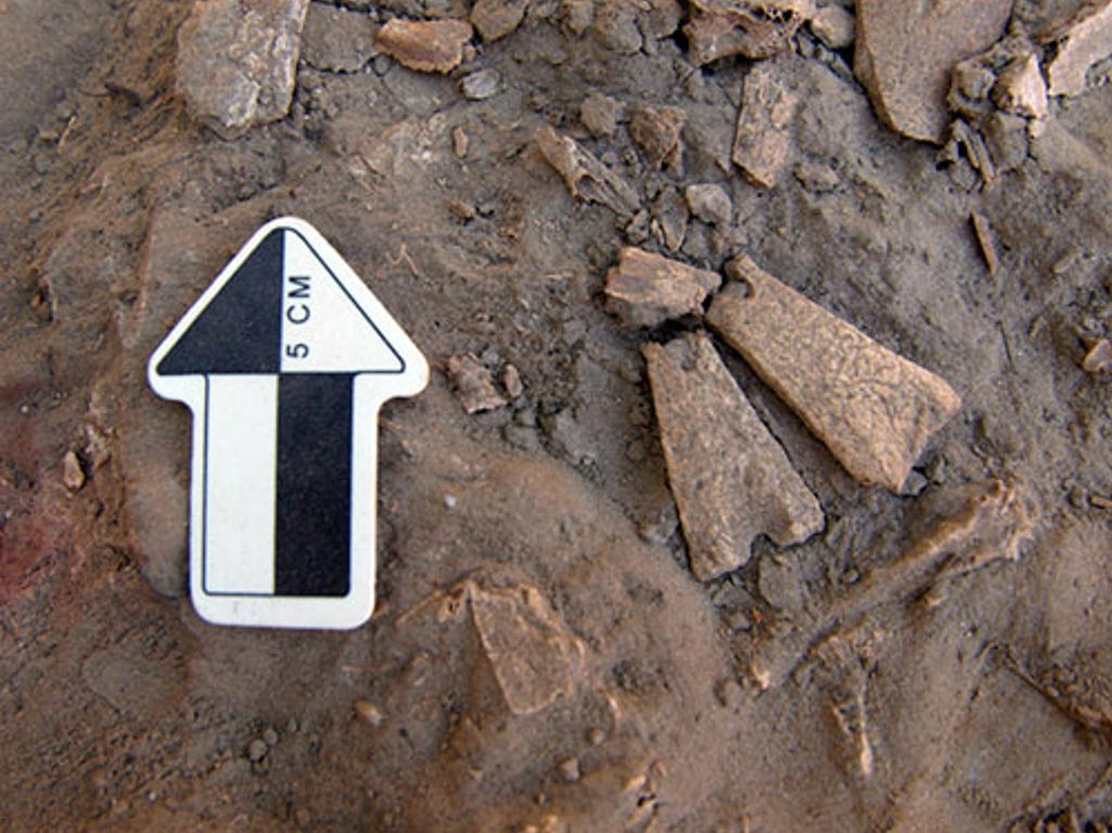 12,300-Year-Old Bone Pendants discovered in Alaska