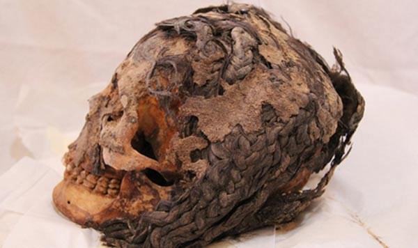 3300 year old egyptian woman with hair extensions discovered in 3300 year old egyptian woman with hair extensions discovered in armana pmusecretfo Images