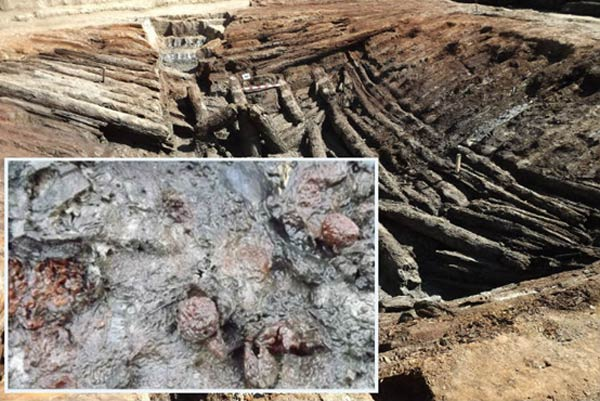 Best-Preserved Ancient Fruit Found in 4,000-Year-Old Burial Chamber