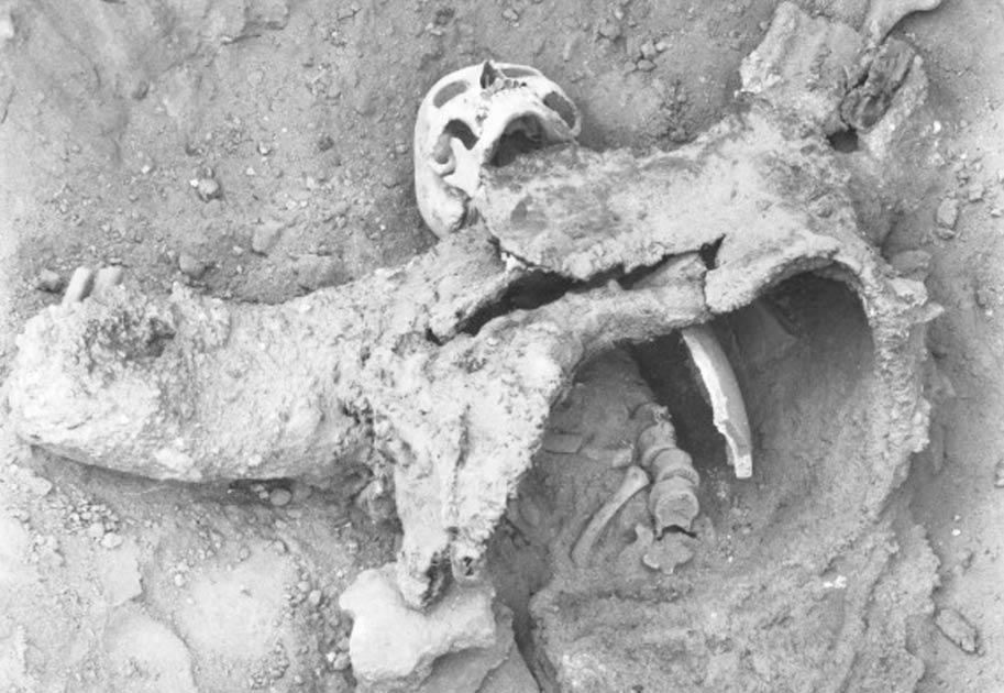 Uno de los esqueletos cree que han muerto durante un ataque de gas venenoso antigua