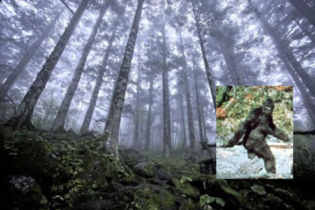 Scientists who believe in bigfoot ancient origins scientists who believe in bigfoot sciox Images