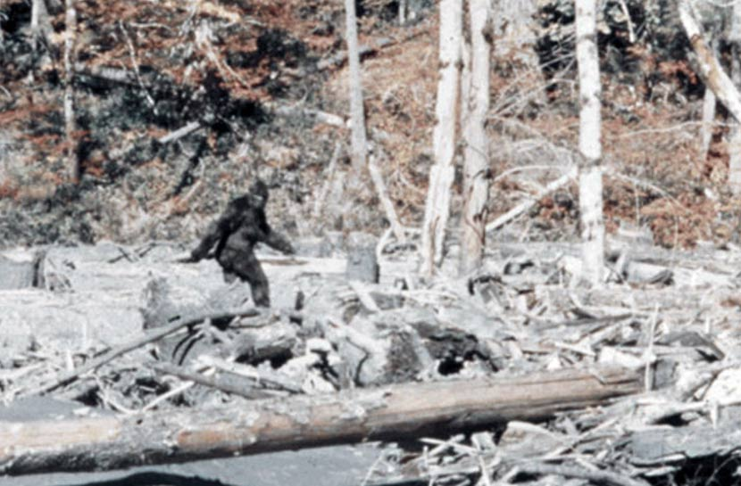 "The famous Bigfoot sighting from ""Patterson–Gimlin film frame 352"" by Patterson-Gimlin film."