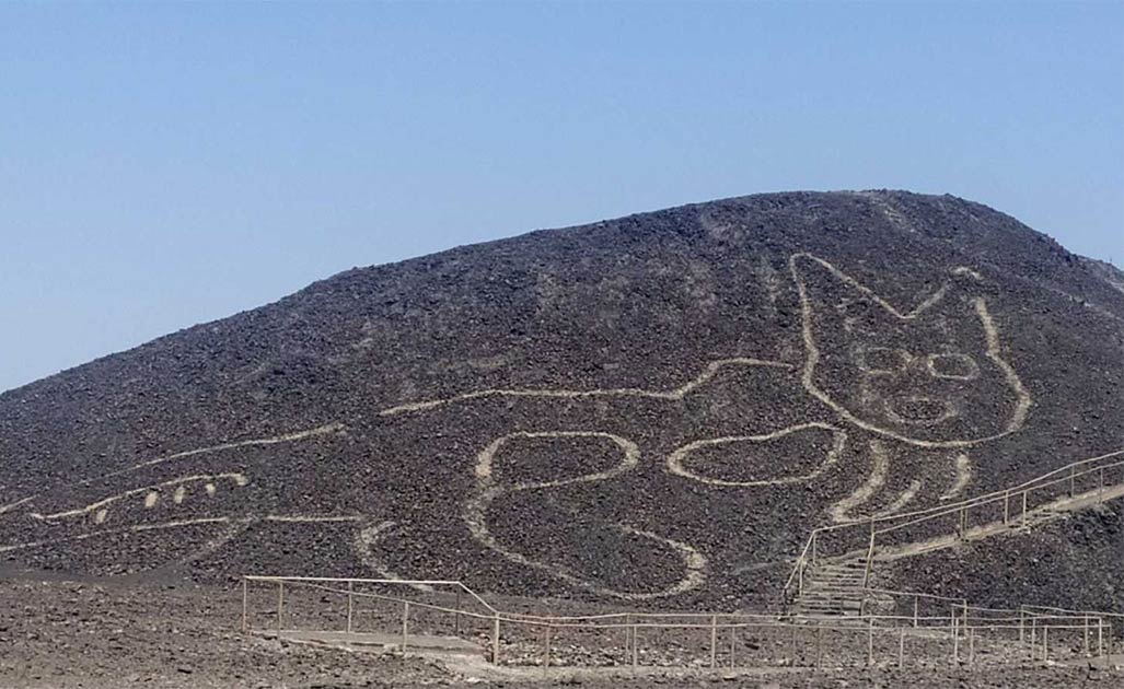 Giant Cat Geoglyph Found Near the Mysterious Nazca Lines