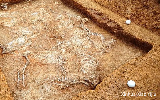 3,000 year old Chinese Tombs - sacrifice