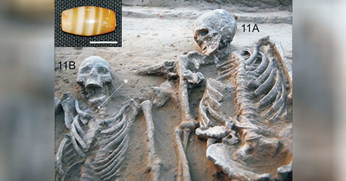 The first clear example of an ancient Harappan couple burial.
