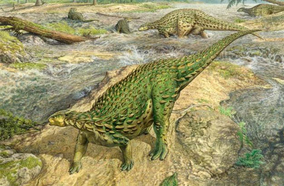 Reconstruction of a live Scelidosaurus, the first complete dinosaur skeleton ever discovered. Source: John Sibbick