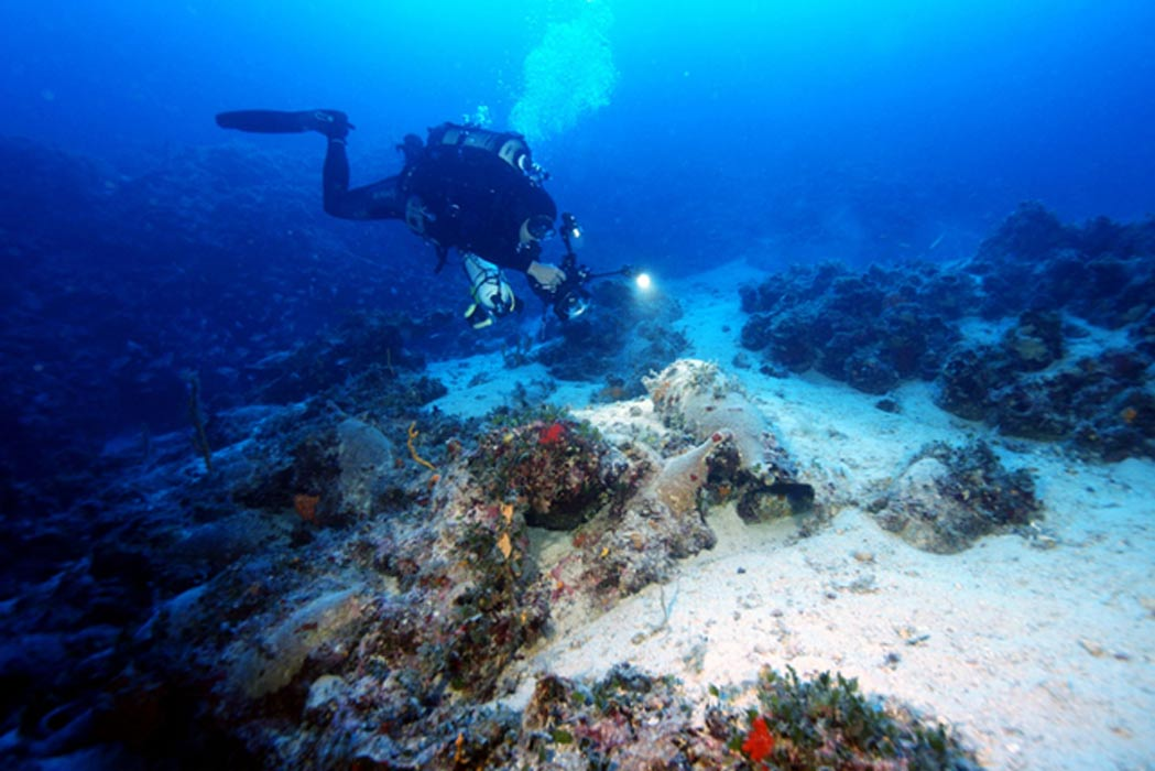 A diver exploring one of the wreck sites.