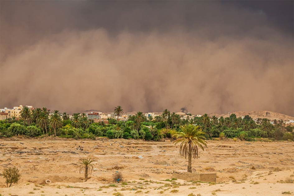 Dust deposits carried by the wind to other places created fertile soils in the Fertile Crescent.   Source: Lukasz Janyst / Adobe Stock