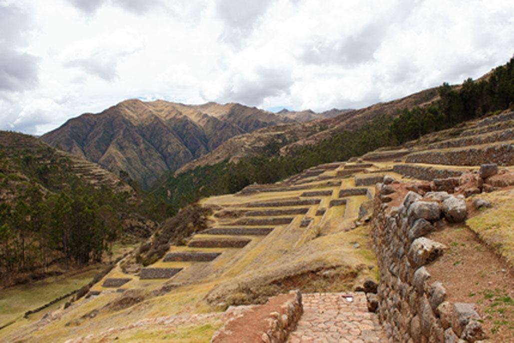 Humans Began Mass Ecological Destruction 3,000 Years Ago