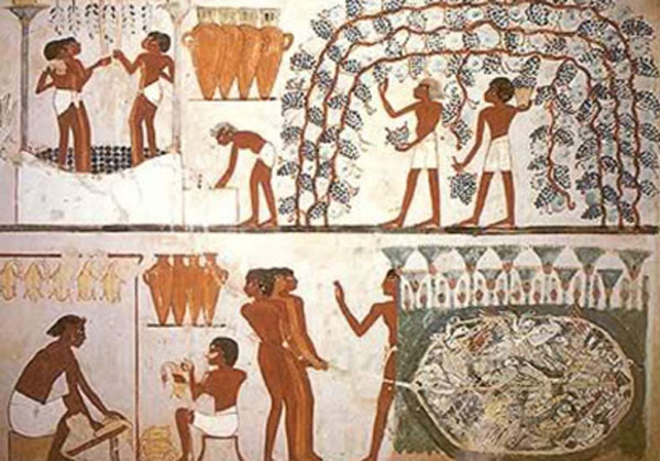 Food and wine preparation - Egyptians