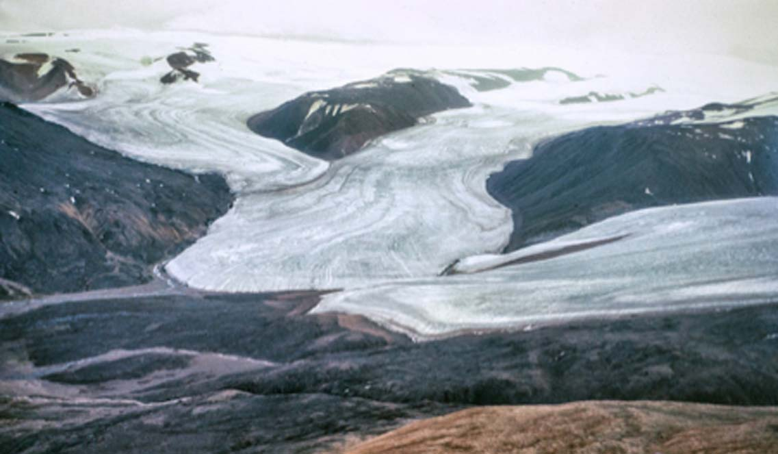 Ellesmere Island Canada where researchers are reviving frozen lifeforms. Source: James / Adobe Stock.