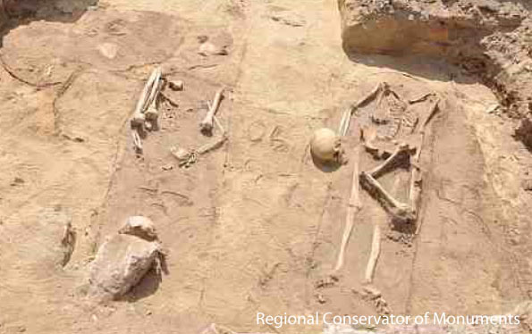 'Vampire' burial site found in Poland
