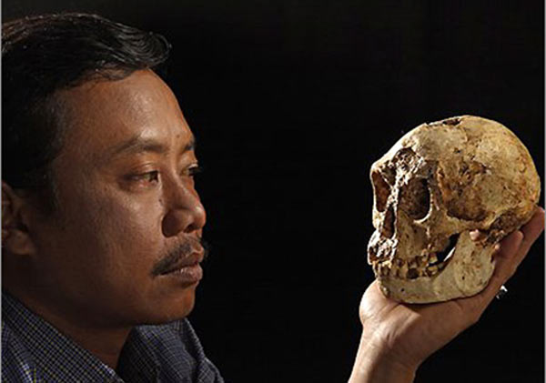 Thomas Sutikna of the Indonesian Centre for Archeology holds the skull of Hobbit