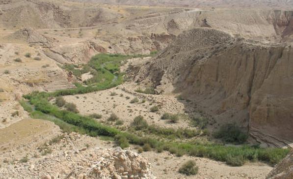 agriculture farming iran zagros
