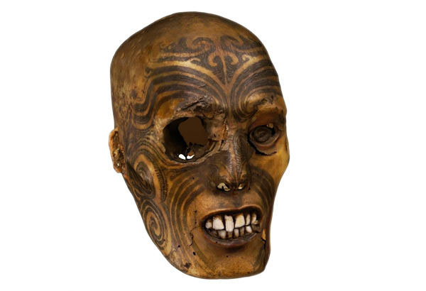 Tattooed Maori head