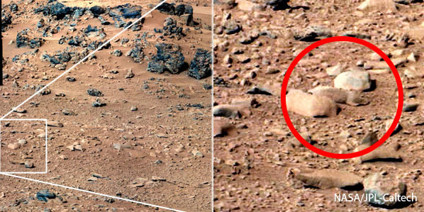 Mars Rock similar to rat