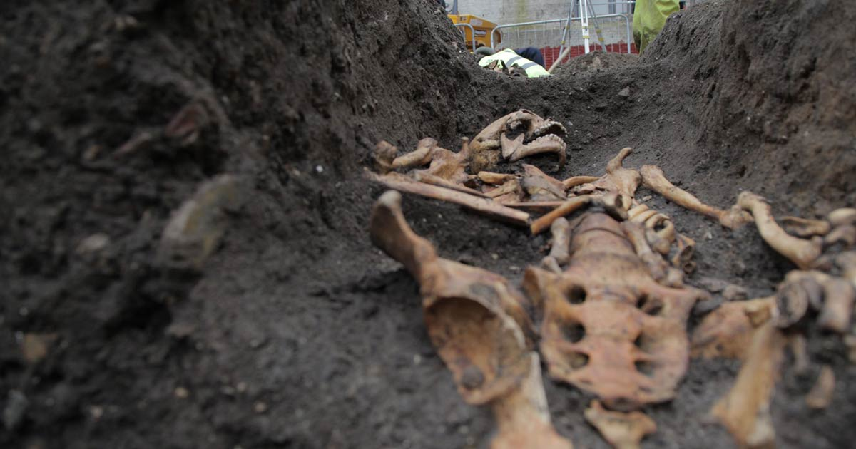 Skeletal Trauma Reveals Class Inequality in Medieval Cambridge
