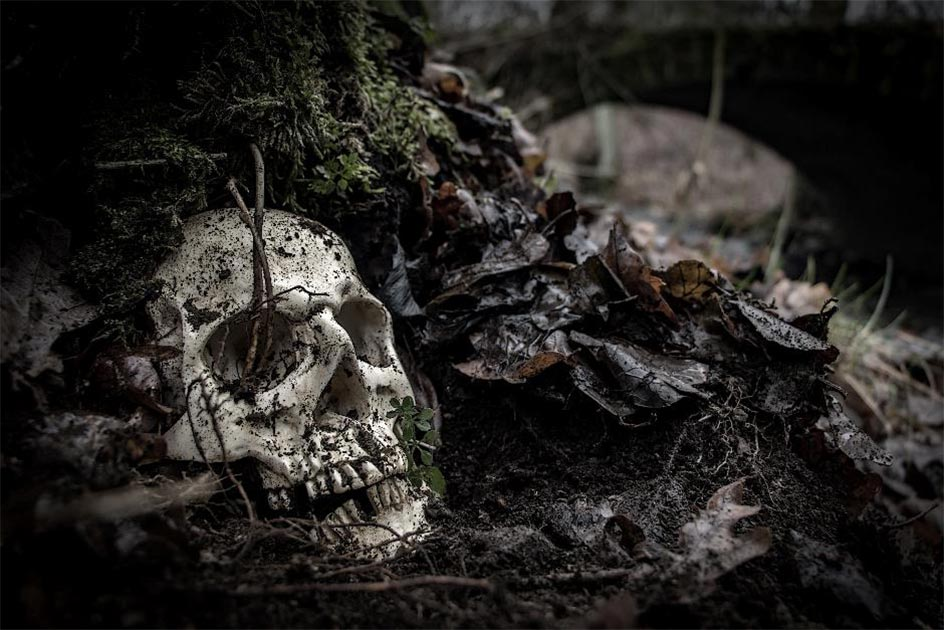 The human remains on the riverbank may be part of a medieval cemetery. Representative image. Source: milkovasa /Adobe Stock