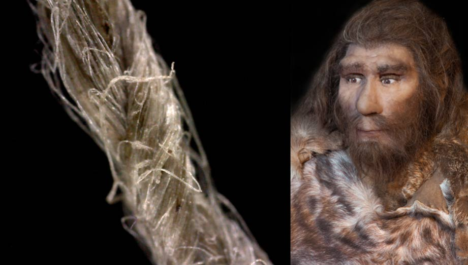Close-up of modern flax cordage showing twisted fiber construction. (S. Deryck) and a modern representation of a Neanderthal