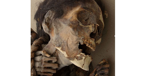 Pre-Columbian mummies Chile - arsenic poisoning