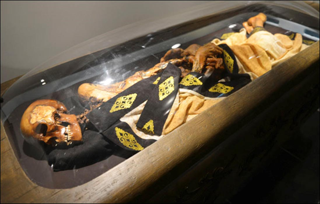 2500 year old tattooed mummy essay (who to write a cover letter to)