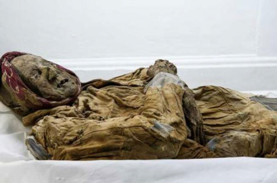 The mummy of Guano