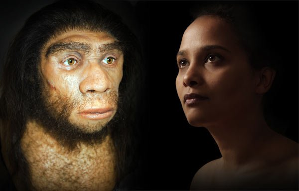 20 Percent of Neanderthal genome in Humans