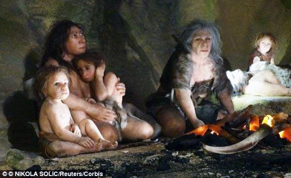 Neanderthals organised