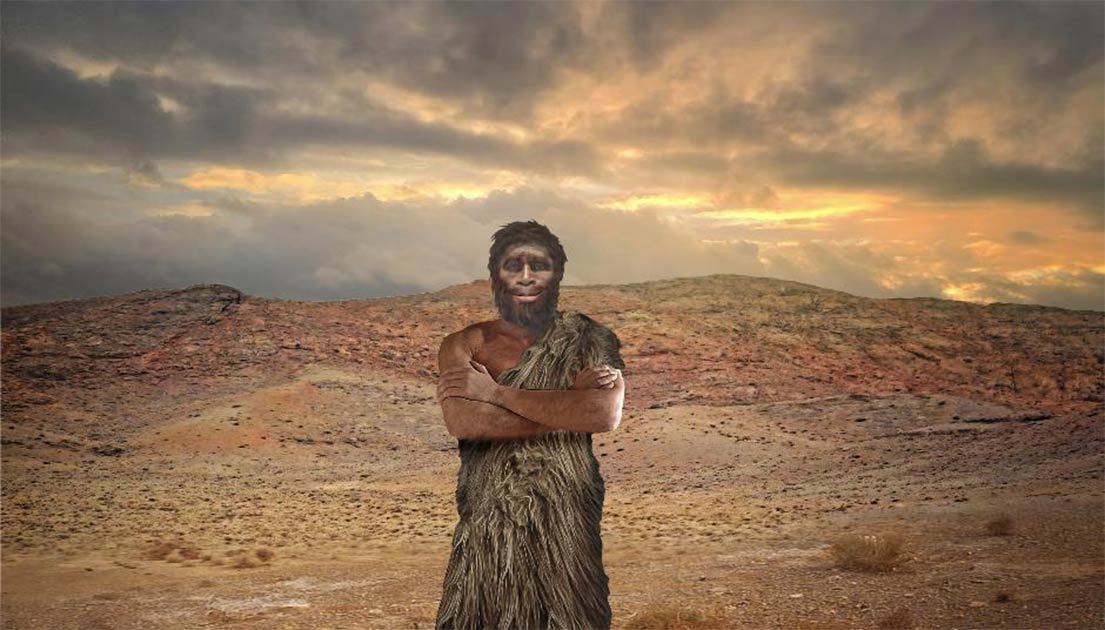 Several past human species went extinct due to climate change. Source: regis allouet /Adobe Stock