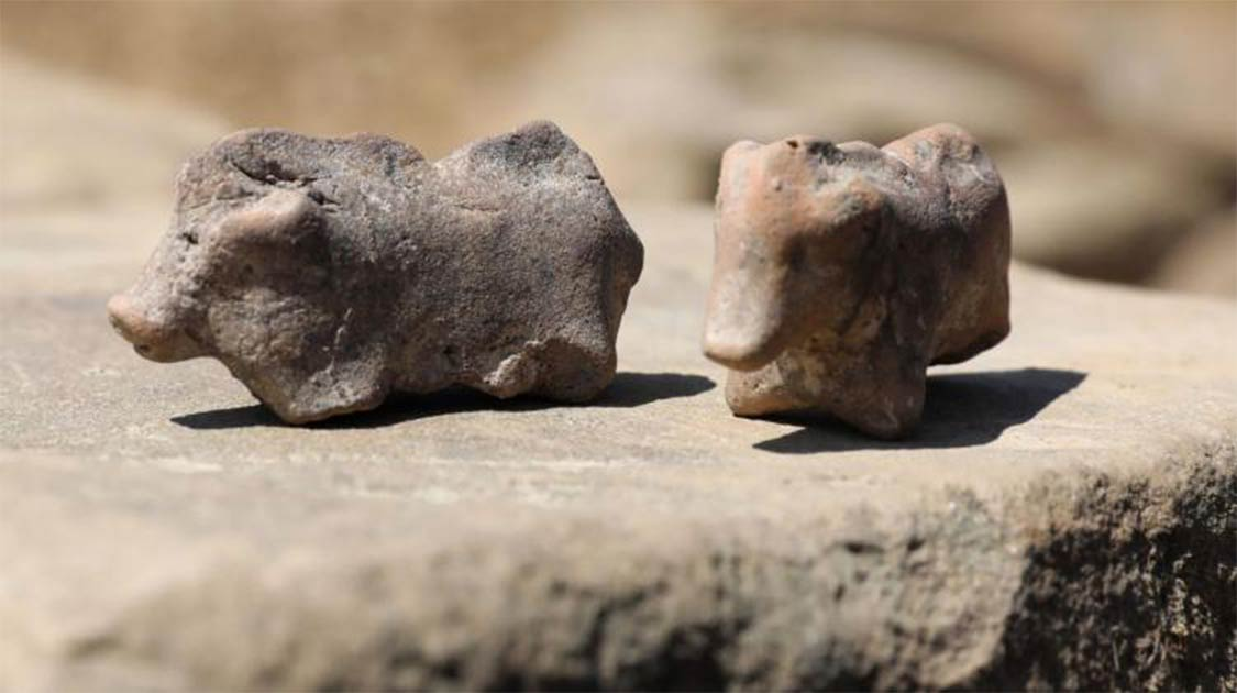 Ancient pig figurines found in Polant Credit: PAP / Grzegorz Momot