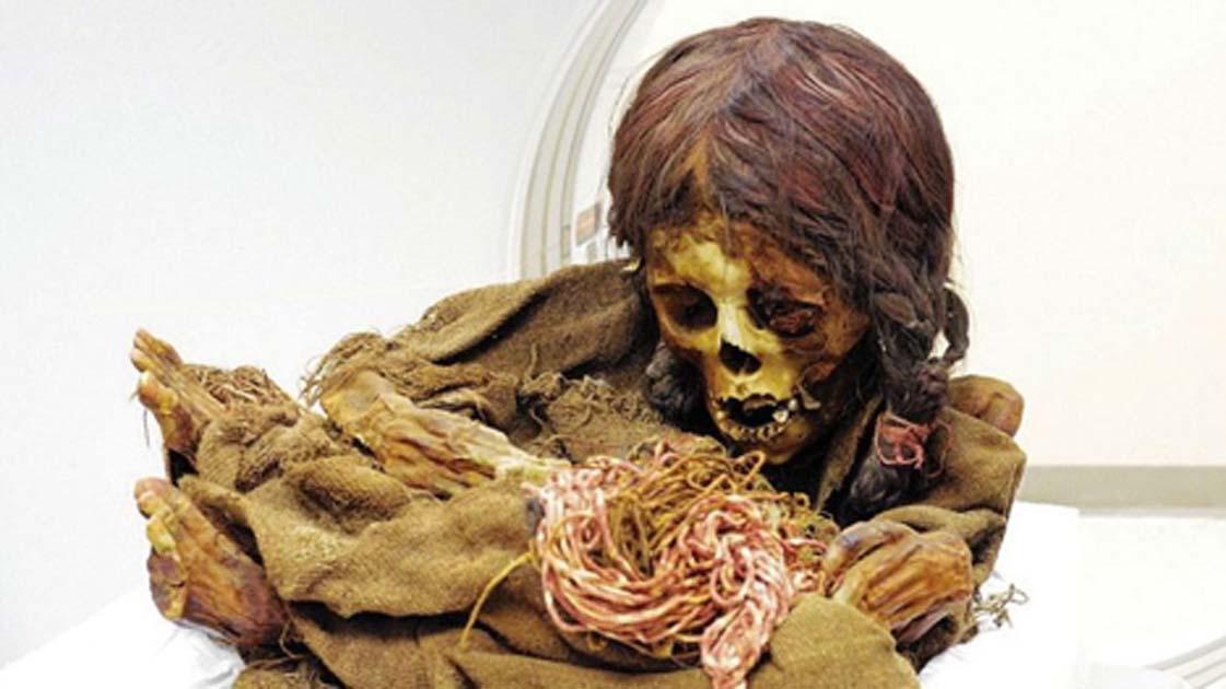 Mummified Hand from Yorkshire May Be Last Hand of Glory