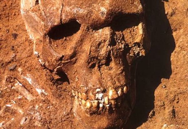13,000-year-old Saharan remains