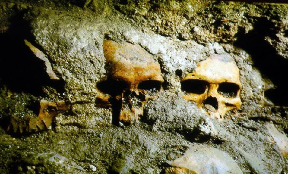 Newly discovered skulls at the Templo Mayor complex in Mexico.