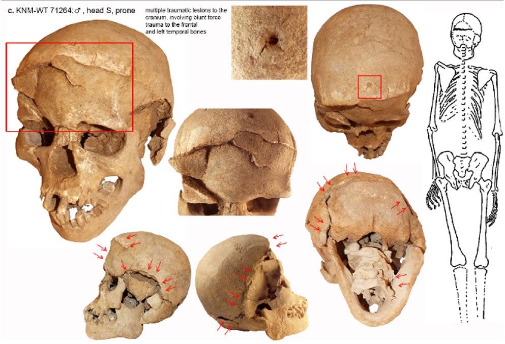 One of the smashed skulls from Lake Nataruk, Kenya.