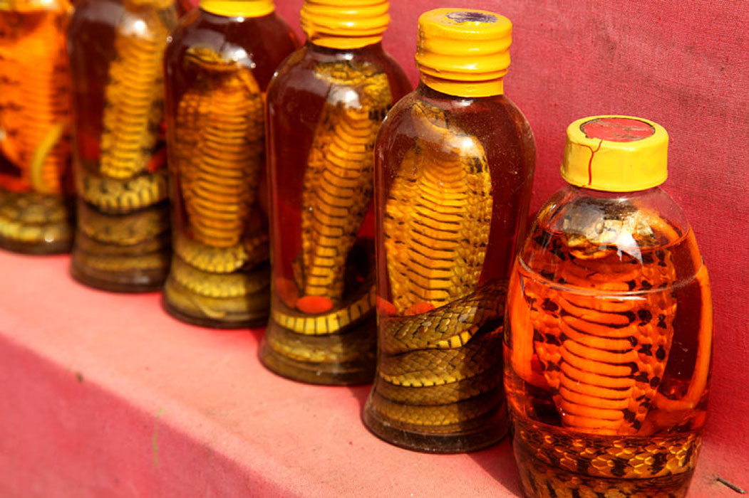 Snake oil in Sapa.