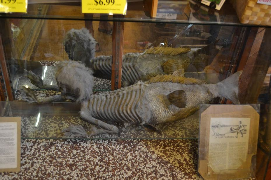 The strange Merman of Banff, Alberta (Canada).