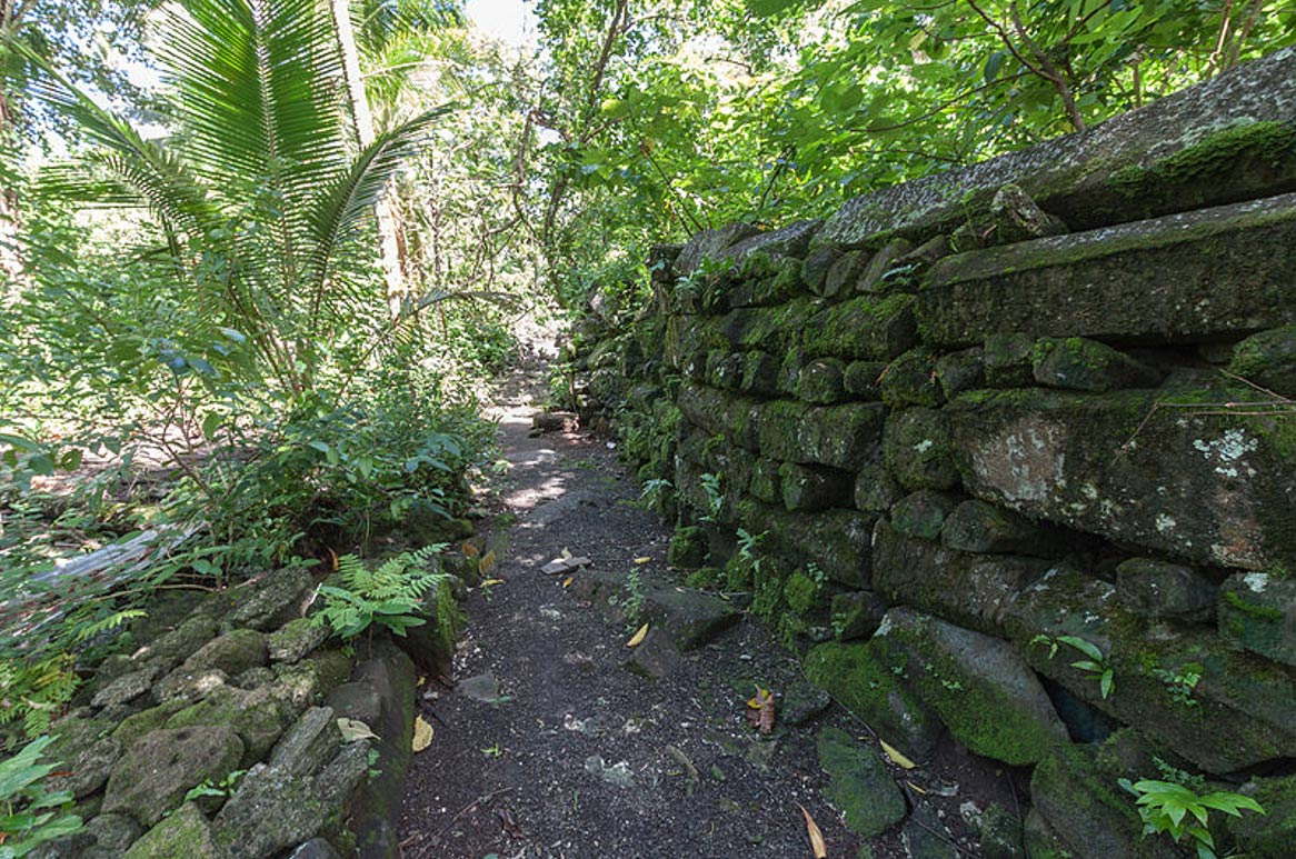 Typical fragment of a wall, Lelu Ruins, Kosrae